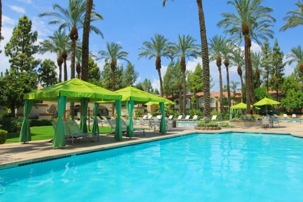 Swimming pool Palm Desert