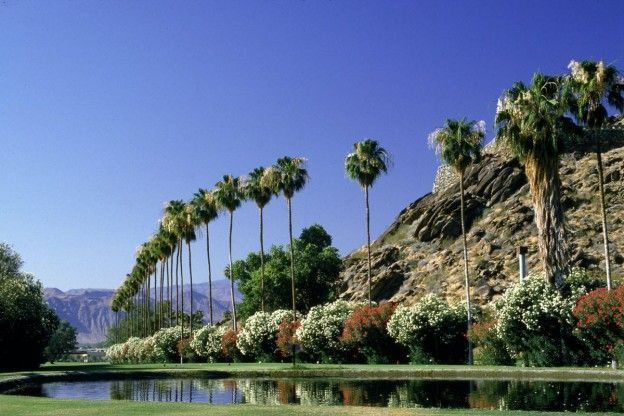 lake in palm springs